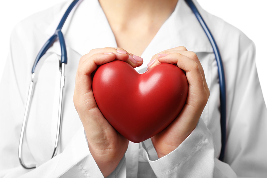 Doctor holding red heart in their hands